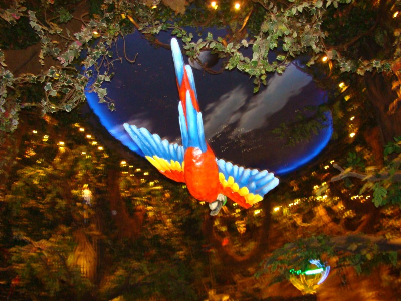 THE CEILING OF THE RAIN FOREST CAFE